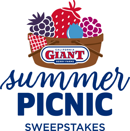 summer-picnic-lp-logo-desktop