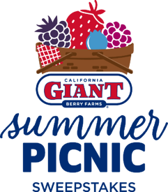 summer-picnic-lp-logo-mobile