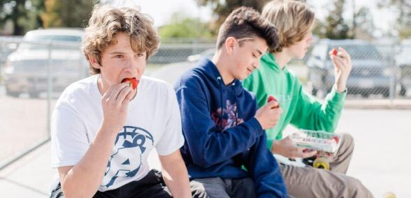 Study Snacks - Strawberries