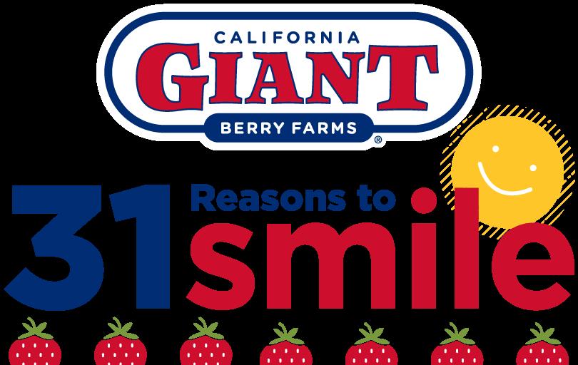 31 Reasons to Smile logo