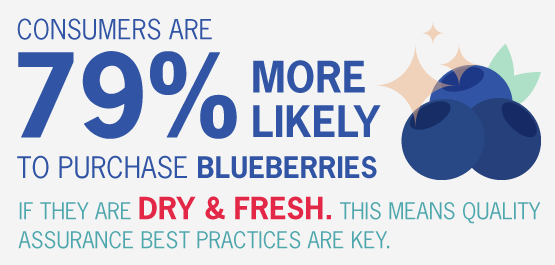 Trade-slides_Blueberry-2-1.png